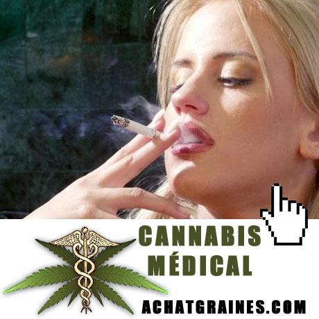 Fumer un joint - Cannabis - Statistiques et effets sur la